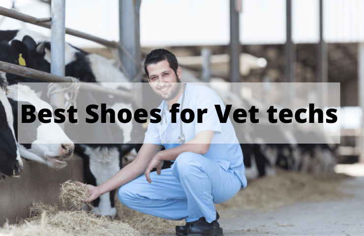 7 Best Shoes for Vet Techs [2021 Reviews] – Top Footwear for Veterinary Work