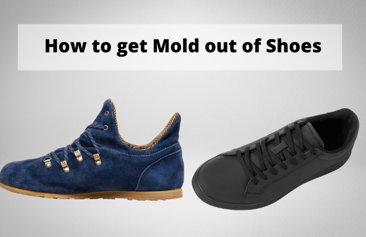 How to Get Mold out of Shoes – Remove Mildews from Leather & Suede