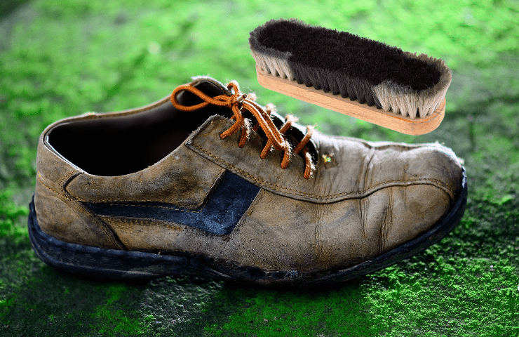 clean molds off leather shoes