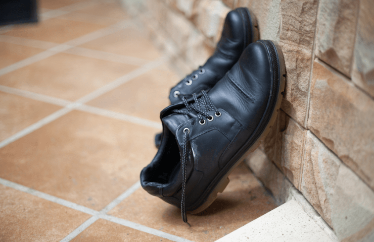Drying of moldy leather shoes