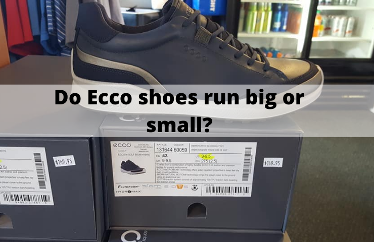 Do Ecco Shoes Run Big or Small? [Get the Right Fit!]