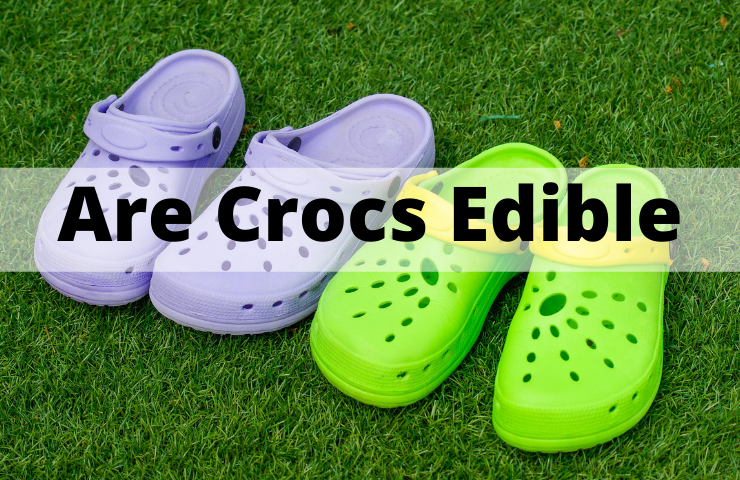 Are Crocs Edible? (Can You Eat Them Safely)