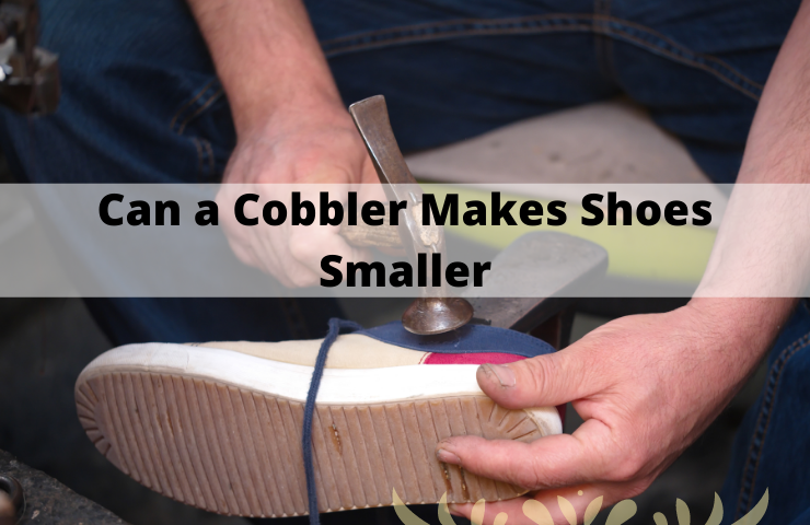 Can a Cobbler Make Shoes Smaller? (Explore and Learn!)
